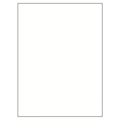 White Poster Board