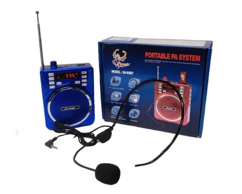 Mini PA Speaker System