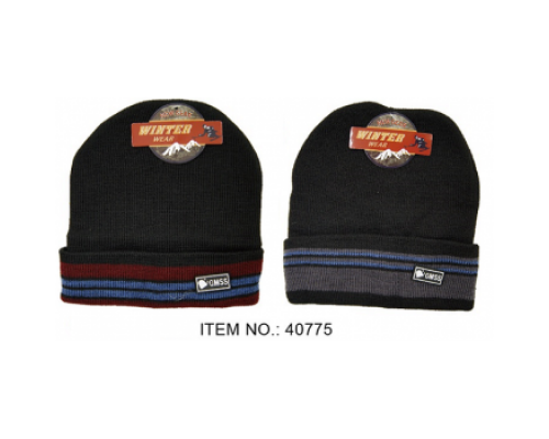 Men's Winter Sport Hat $1.25 Each.